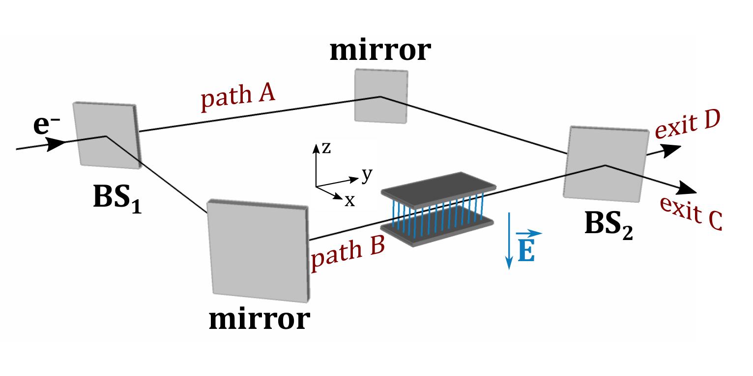Quantum Interference of Force – Quantum
